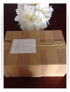 stomaaid-boxpacked