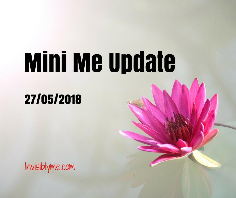 Mini Me Update [ 27/05/2018 ]